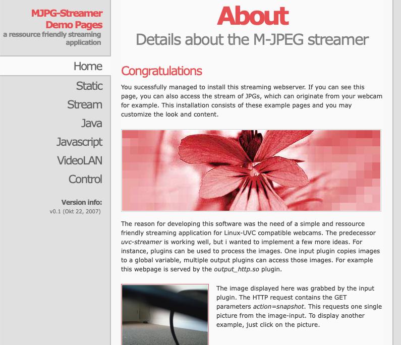 webcam example