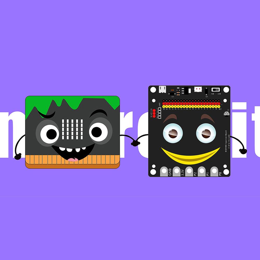Micro:Bit & PnP board